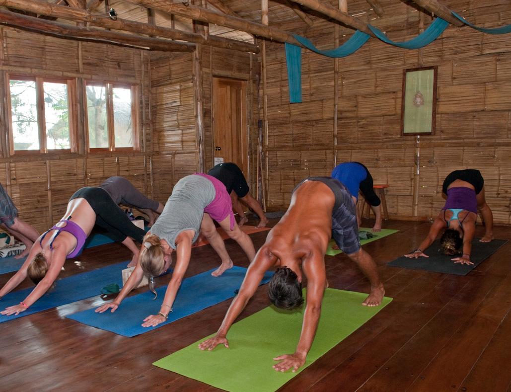 the complete book of vinyasa yoga pdf download